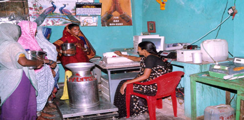 A tribal woman milk co-operative society operative automatic computerized milk weighing and fat testing system